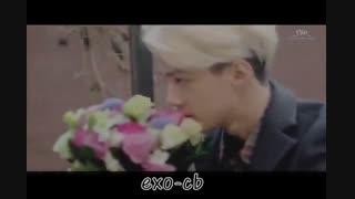 میکس اهنگ دروغ دوست داشتی از مرتضی پاشایی با موزیک ویدیو های کره ای (اکسو-گات سون-مون استکس-بیگ بنگ)