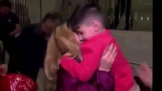آمریکا مهد آزادی؟!!دستگیری پسر 5 ساله ایرانی در فرودگاه دالس آمریکا
