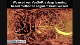 نمایی از سلولهای مغز در واقعیت مجازی