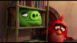 اولین ویدیو  رسمی از انیمیشن The Angry Birds 2 (پرندگان خشمگین 2)