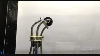 ربات زالو از در و دیوار بالا می رود