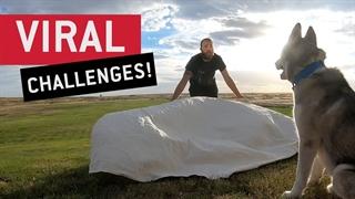 چالشهای وایرال اینترنتی