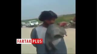 مجازات سنگین روزه خواران به دست طالبان