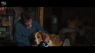 تریلر فیلم A Dog s Journy با زیرنویس فارسی + مصاحبه با بازیگراش