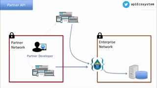 معرفی انواع مختلف اَپی (API) و ملاحظات مدیریتی آن