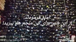 مدارای امام علی (ع) با قاتلش؟ این ویدئو  را حتما ببینید