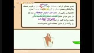 برترین مراکز کاردرمانی کرج|گفتار توان گستر البرز09121623463